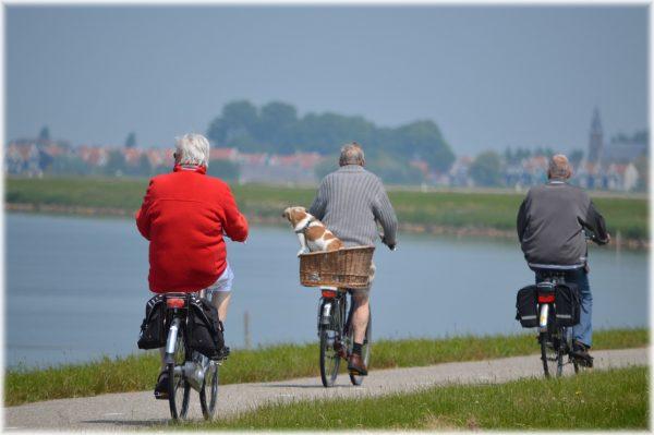 Should I transfer a final salary pension?